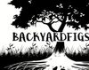 backyardfigs