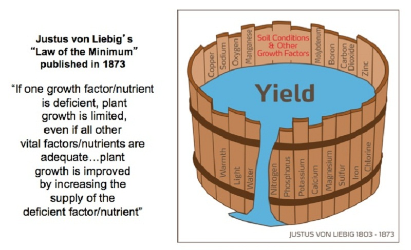Liebig's Law and Barrel...